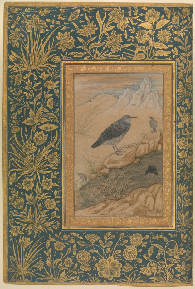 Brown Dipper by Ustad Mansur; Mughal era, c. 1620; metmuseum.org | Click image for larger view.