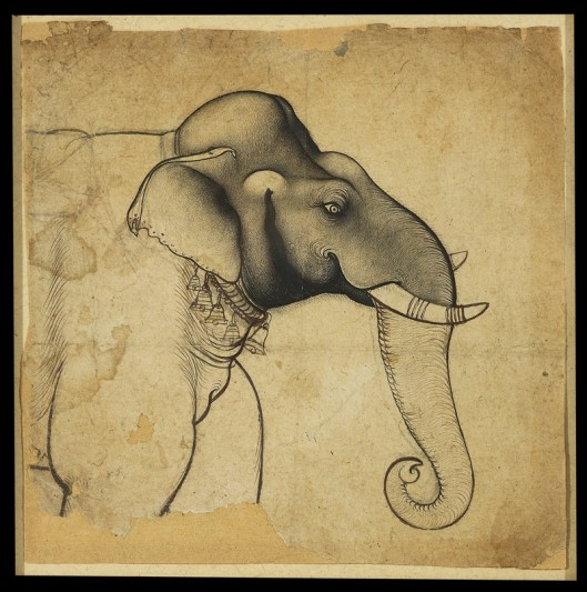 Head of an Elephant - Kota, Rajasthan, 1700-1710.
